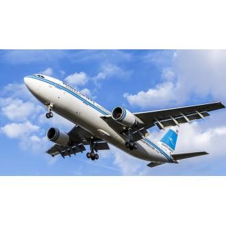 Airbus A300-A600F